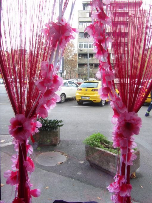 Končana zavesa roza orhideje